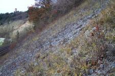 Habitat in den Oberen Gäuen: Steile, südexponierte Felsschutthalde