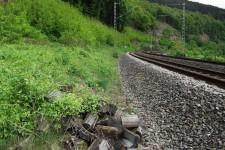 Weiterer typischer Lebensraum, Bahndamm mit Säumen und Holzpoltern