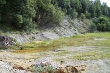 Flaches und sommerwarmes Kiesgrubengewässer als Reproduktionshabitat