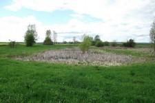 Laichgewässer des Laubfroschs im offenen Kulturland im Albvorland.