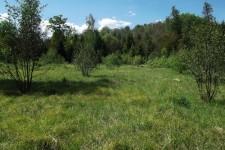 Ehemals milittärisch genutzte Offenflächen in den Keuperwaldbergen